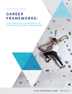 career frameworks